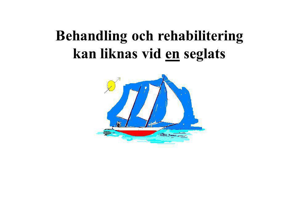 Behandling och rehabilitering kan liknas vid en seglats