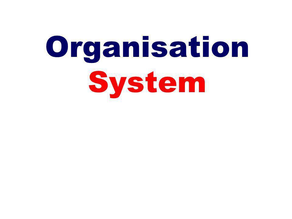 Organisation System