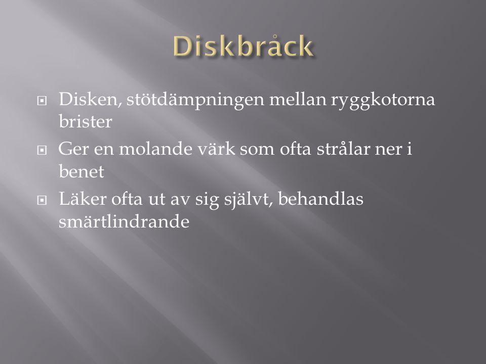 Diskbråck Disken, stötdämpningen mellan ryggkotorna brister