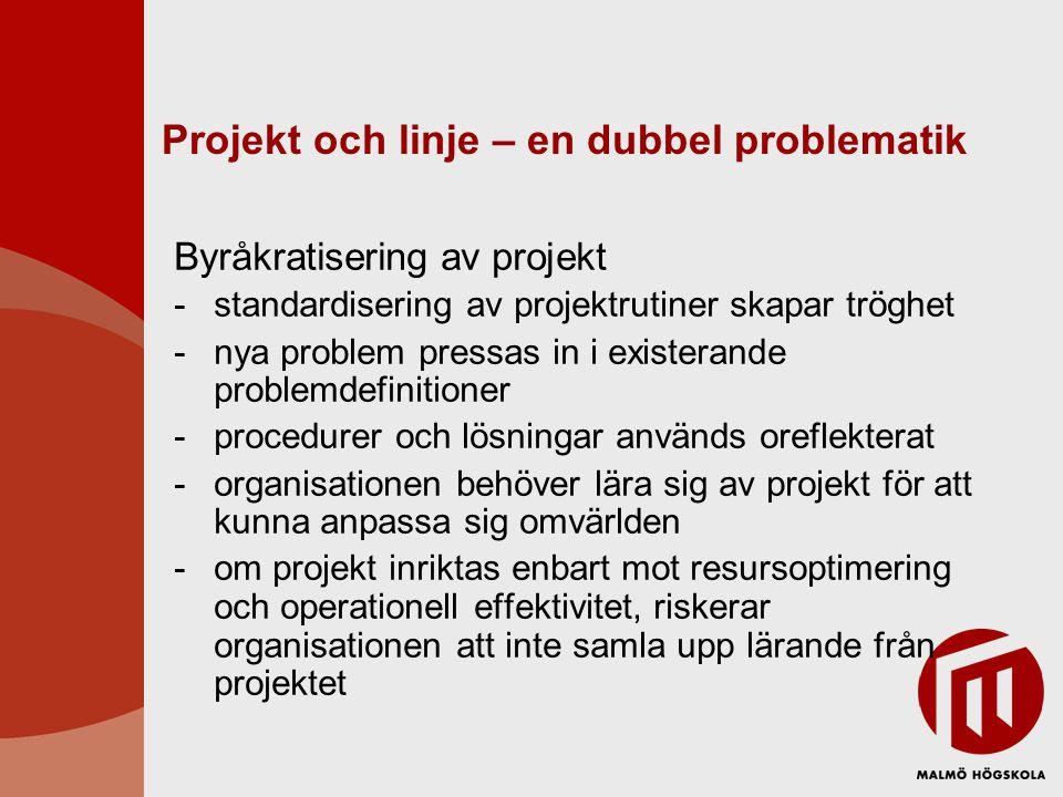 Projekt och linje – en dubbel problematik