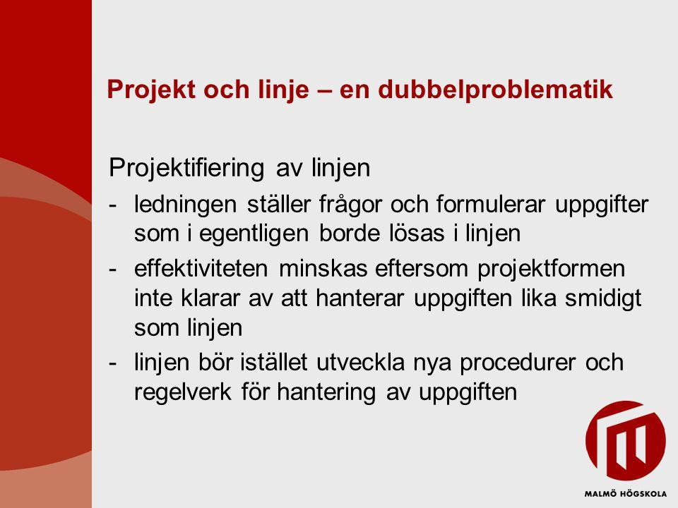 Projekt och linje – en dubbelproblematik