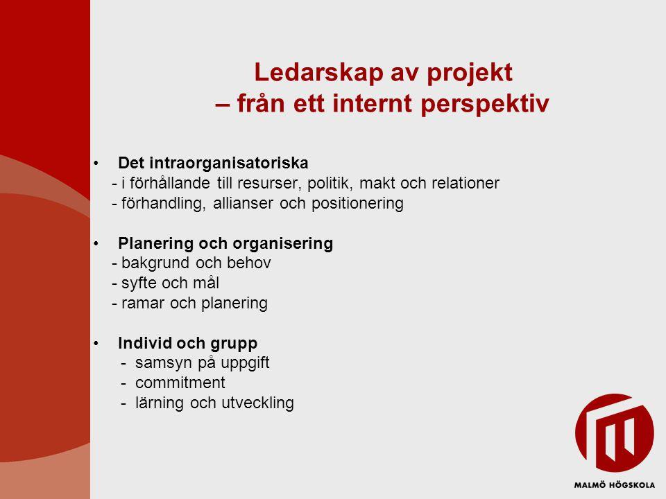 Ledarskap av projekt – från ett internt perspektiv