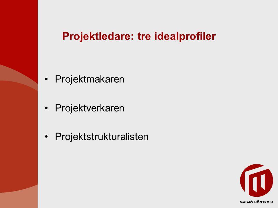 Projektledare: tre idealprofiler