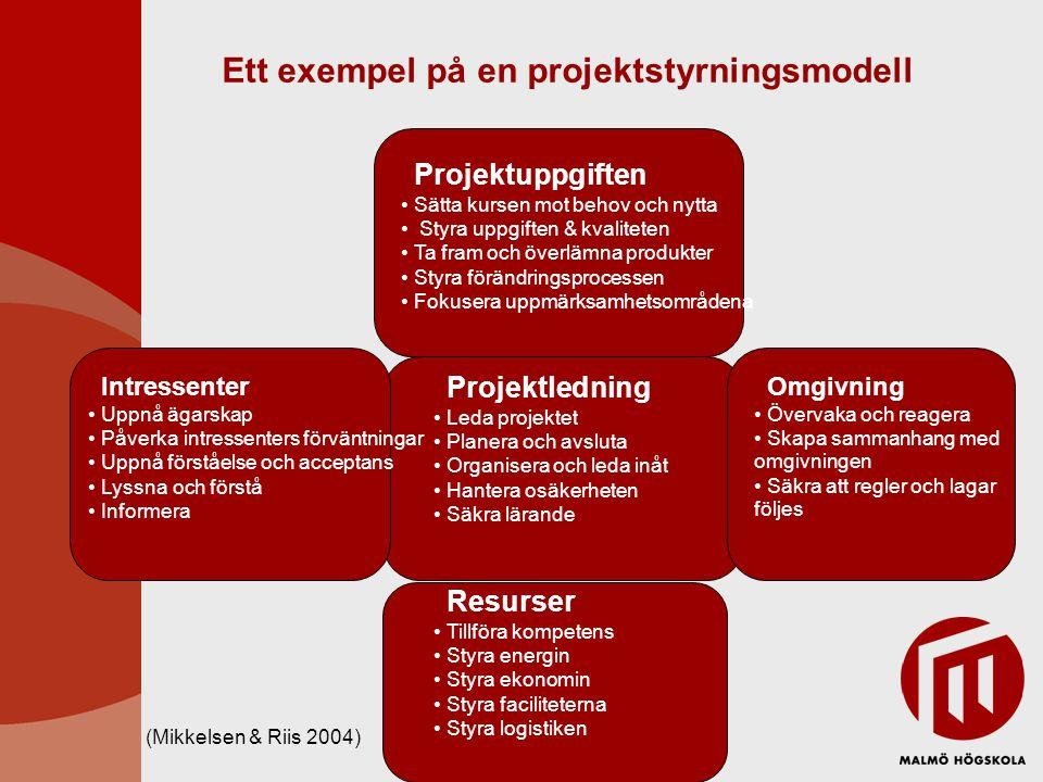 Ett exempel på en projektstyrningsmodell