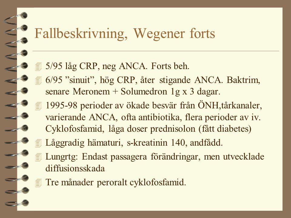 Fallbeskrivning, Wegener forts
