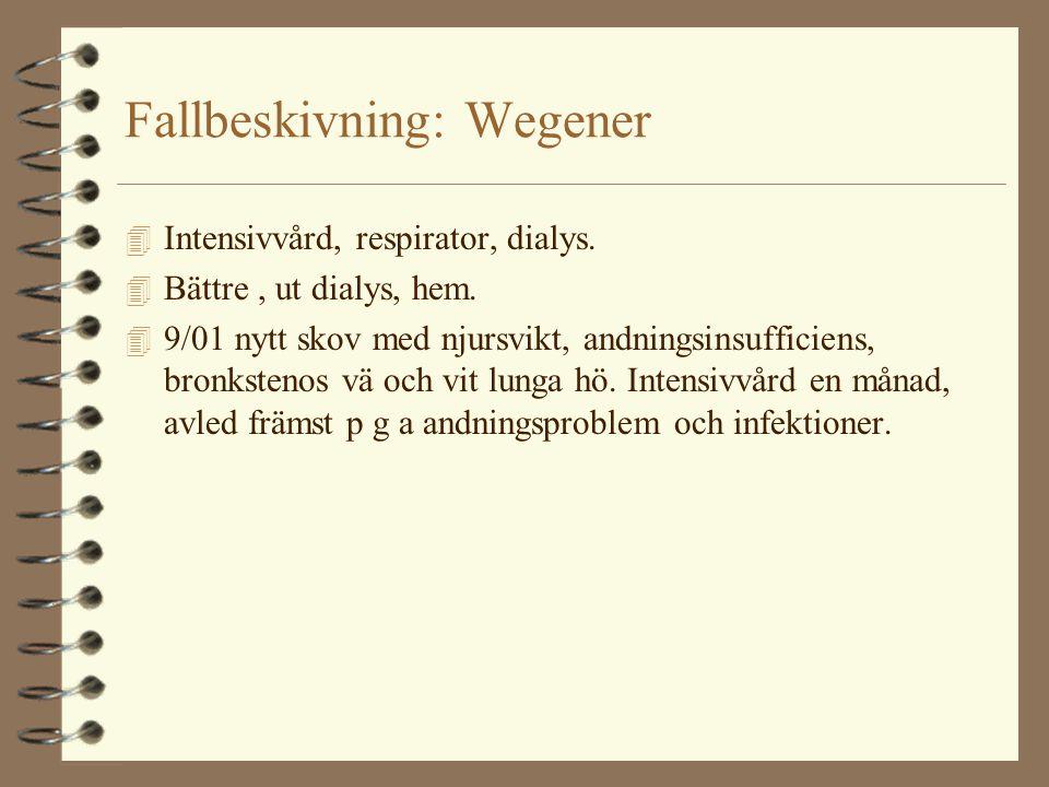Fallbeskivning: Wegener