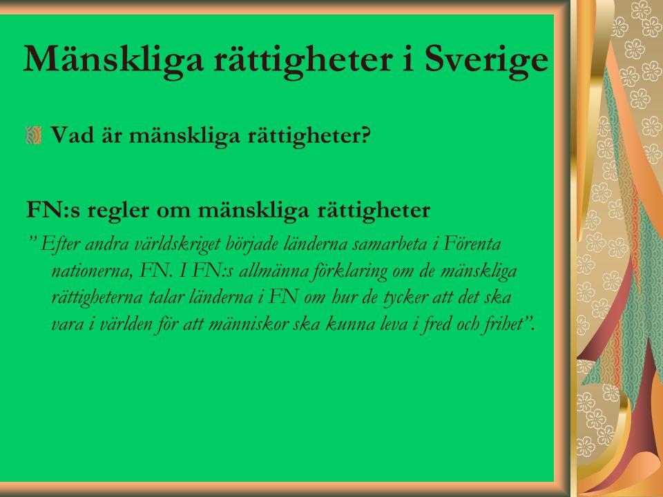 Mänskliga rättigheter i Sverige