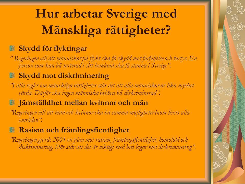 Hur arbetar Sverige med Mänskliga rättigheter