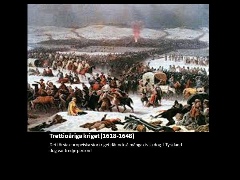 Trettioåriga kriget (1618-1648)