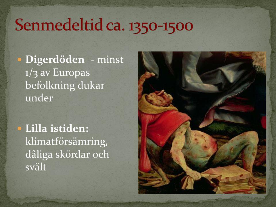 Senmedeltid ca. 1350-1500 Digerdöden - minst 1/3 av Europas befolkning dukar under.