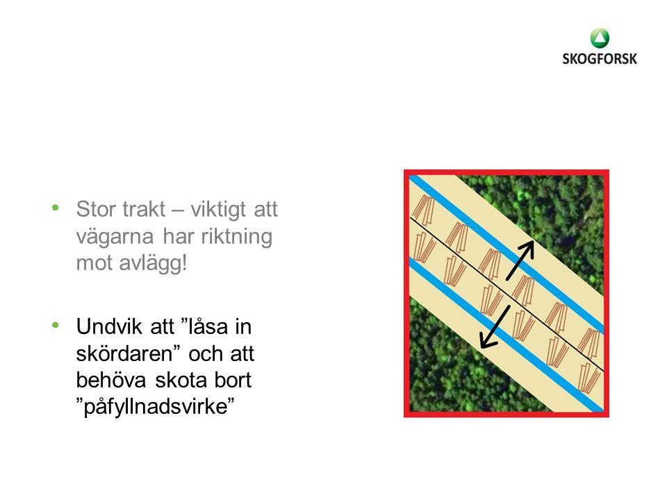 Stor trakt – viktigt att vägarna har riktning mot avlägg!
