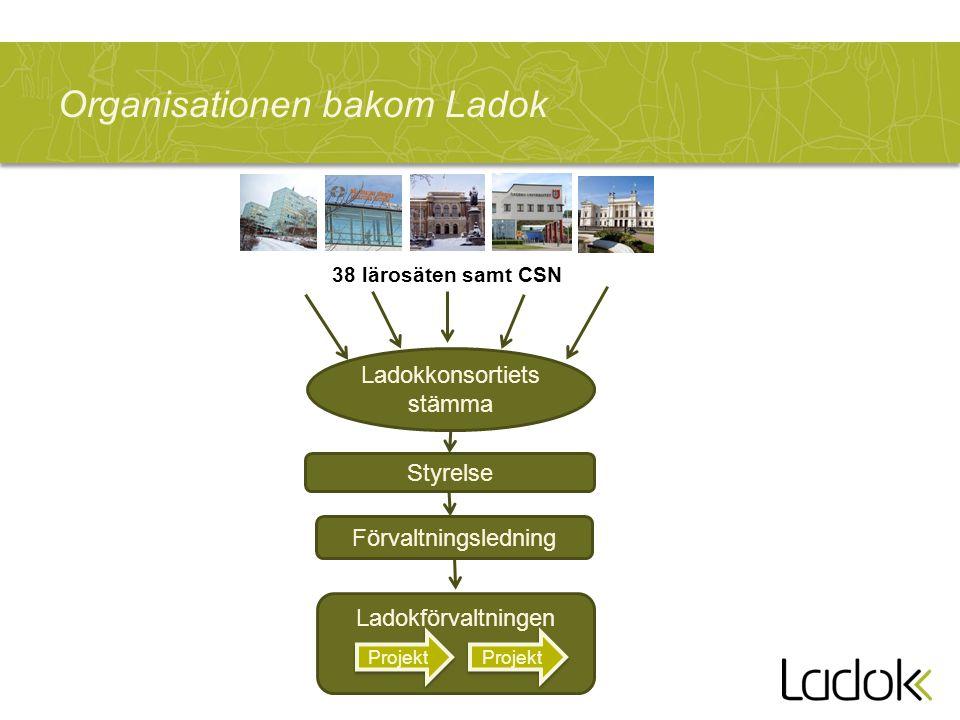 Organisationen bakom Ladok