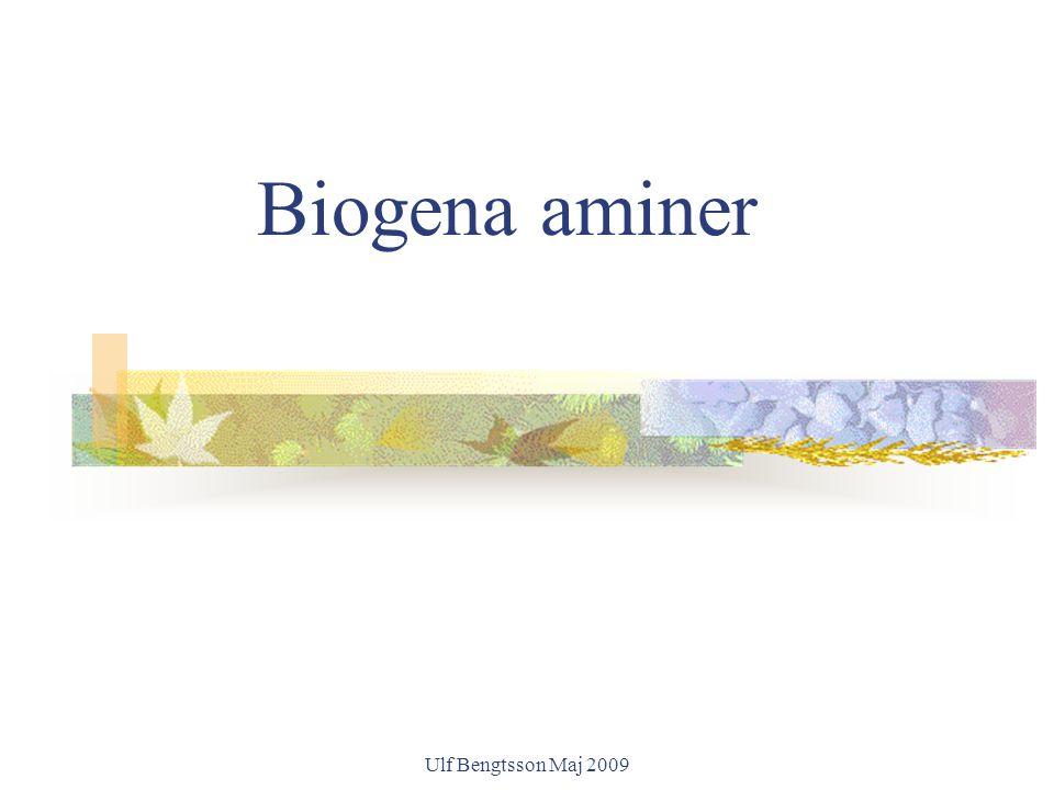 Biogena aminer Ulf Bengtsson Maj 2009