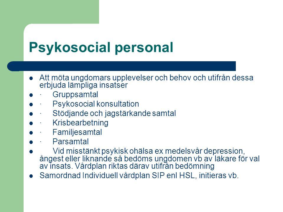 Psykosocial personal Att möta ungdomars upplevelser och behov och utifrån dessa erbjuda lämpliga insatser.