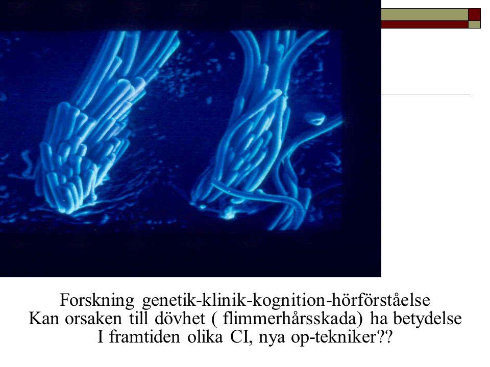 Forskning genetik-klinik-kognition-hörförståelse