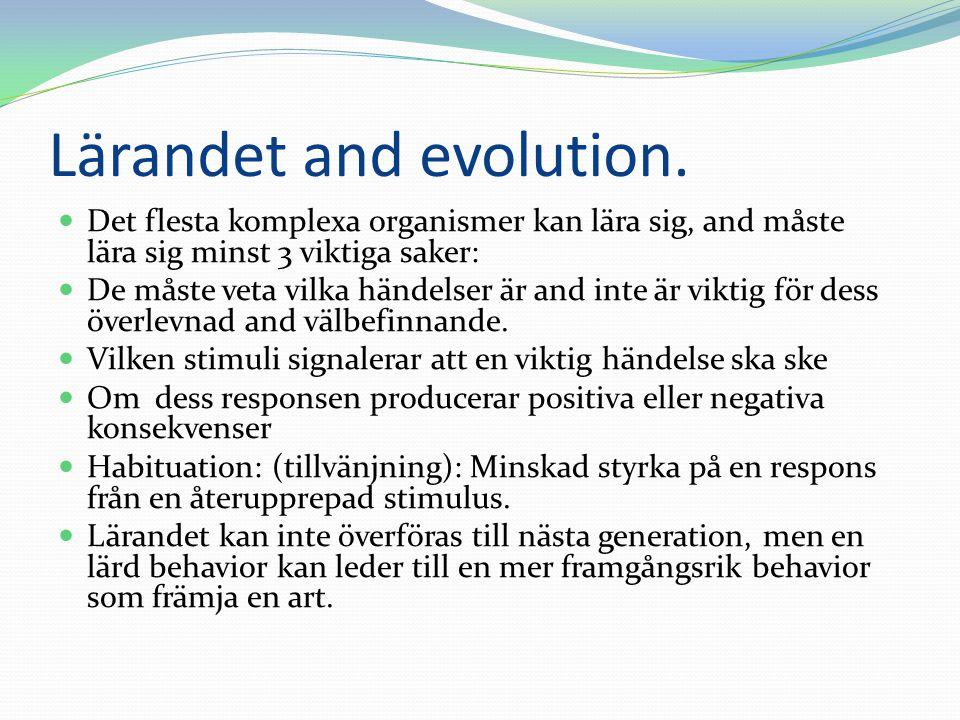 Lärandet and evolution.