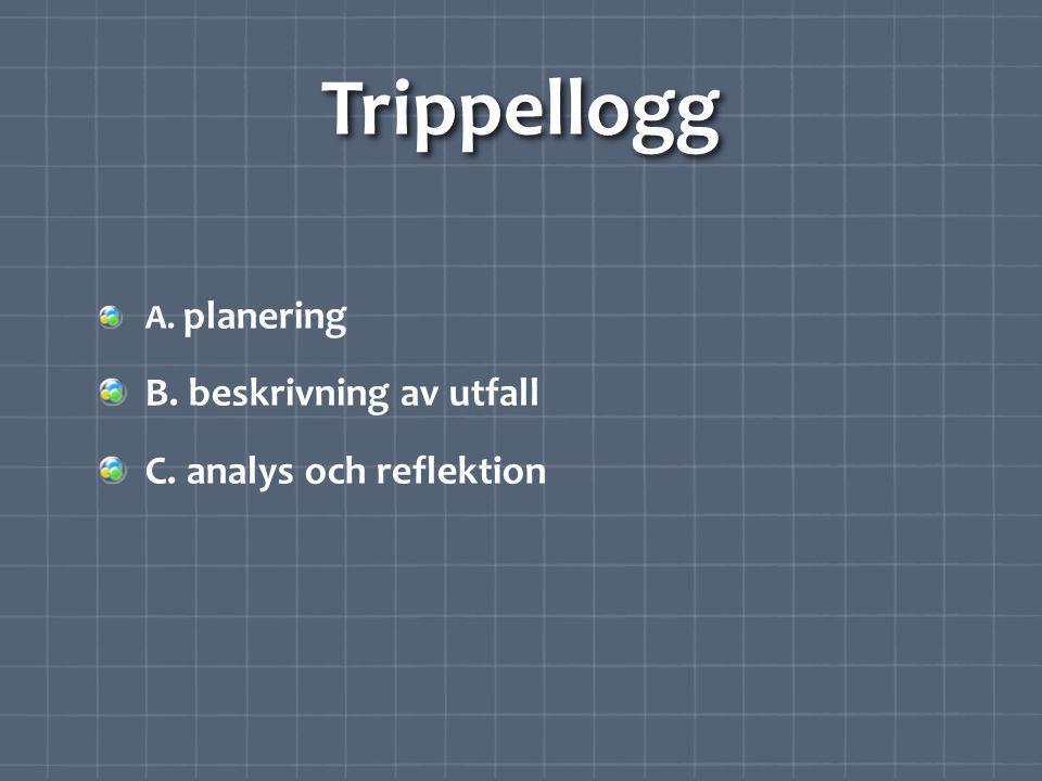 Trippellogg B. beskrivning av utfall C. analys och reflektion