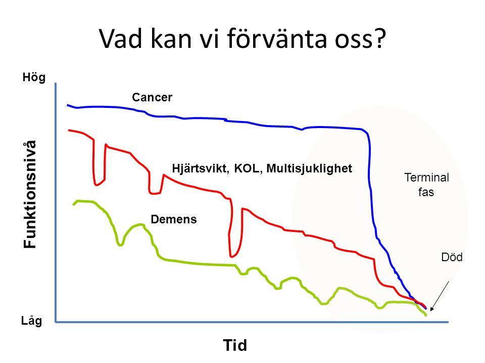 Vad kan vi förvänta oss Funktionsnivå Tid Hög Cancer