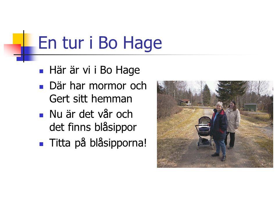 En tur i Bo Hage Här är vi i Bo Hage