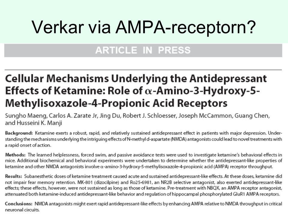 Verkar via AMPA-receptorn