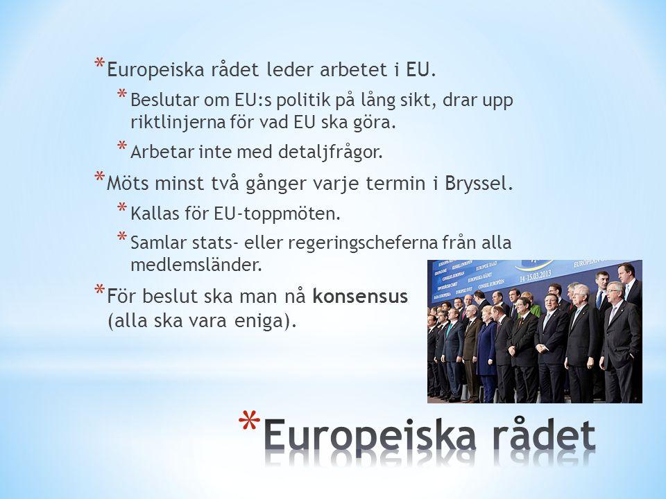Europeiska rådet Europeiska rådet leder arbetet i EU.