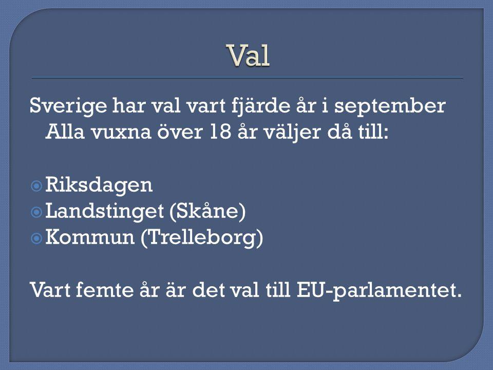 Val Sverige har val vart fjärde år i september Alla vuxna över 18 år väljer då till: Riksdagen. Landstinget (Skåne)