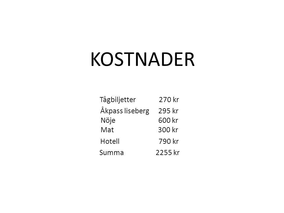 Åkpass liseberg 295 kr Nöje 600 kr Mat 300 kr