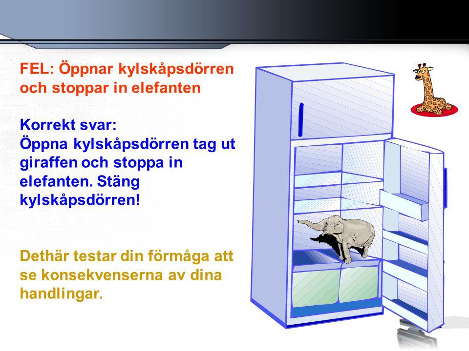 FEL: Öppnar kylskåpsdörren och stoppar in elefanten