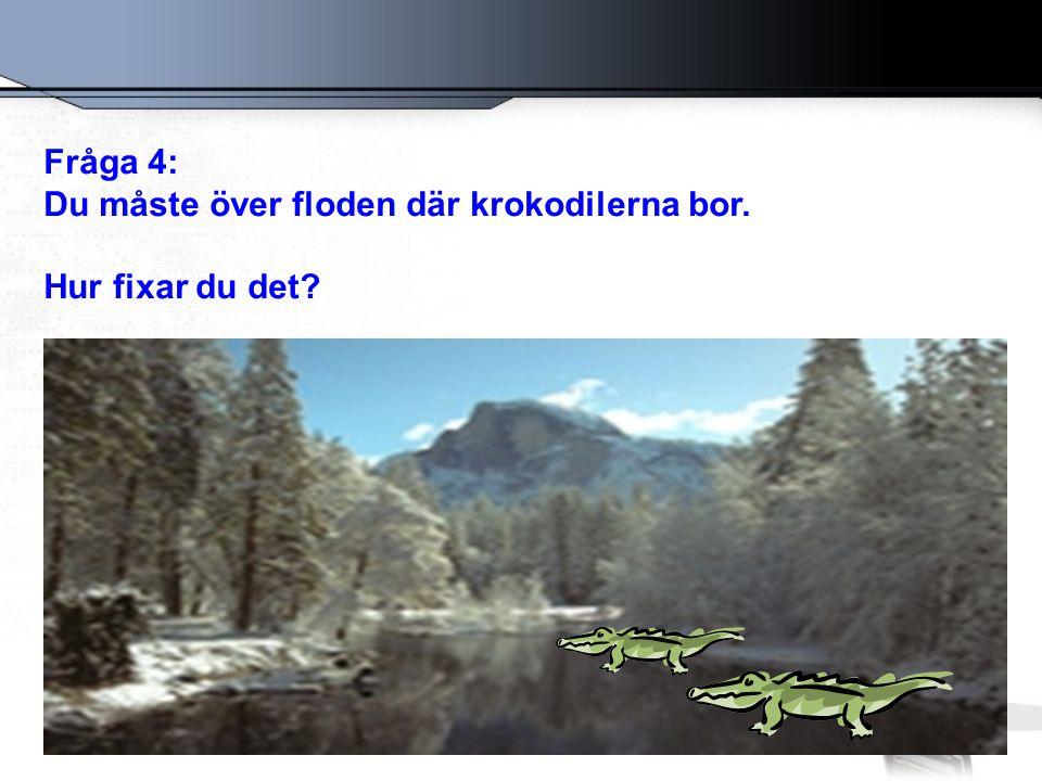 Fråga 4: Du måste över floden där krokodilerna bor. Hur fixar du det