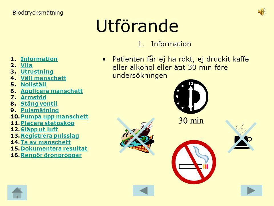 Utförande 30 min 1. Information