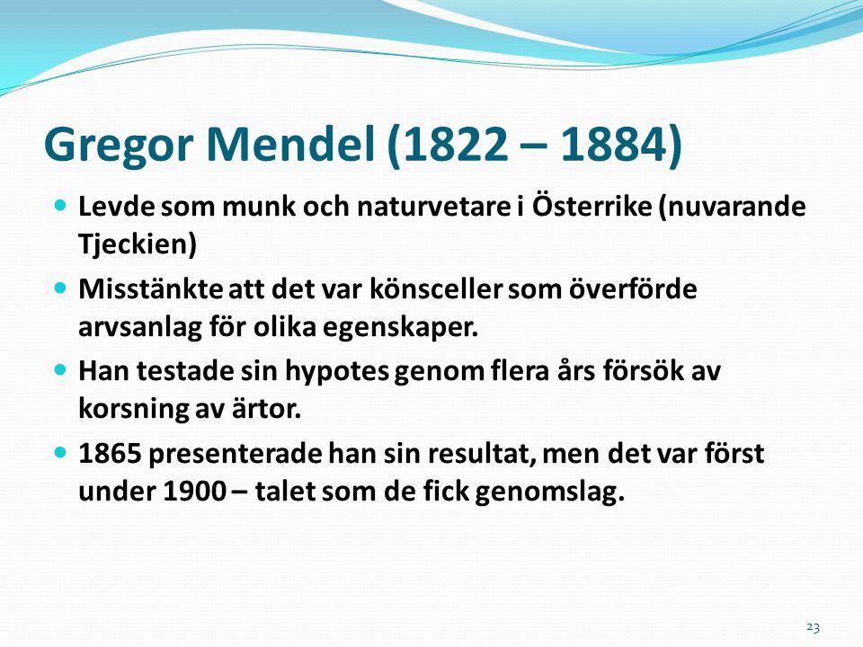 Gregor Mendel (1822 – 1884) Levde som munk och naturvetare i Österrike (nuvarande Tjeckien)
