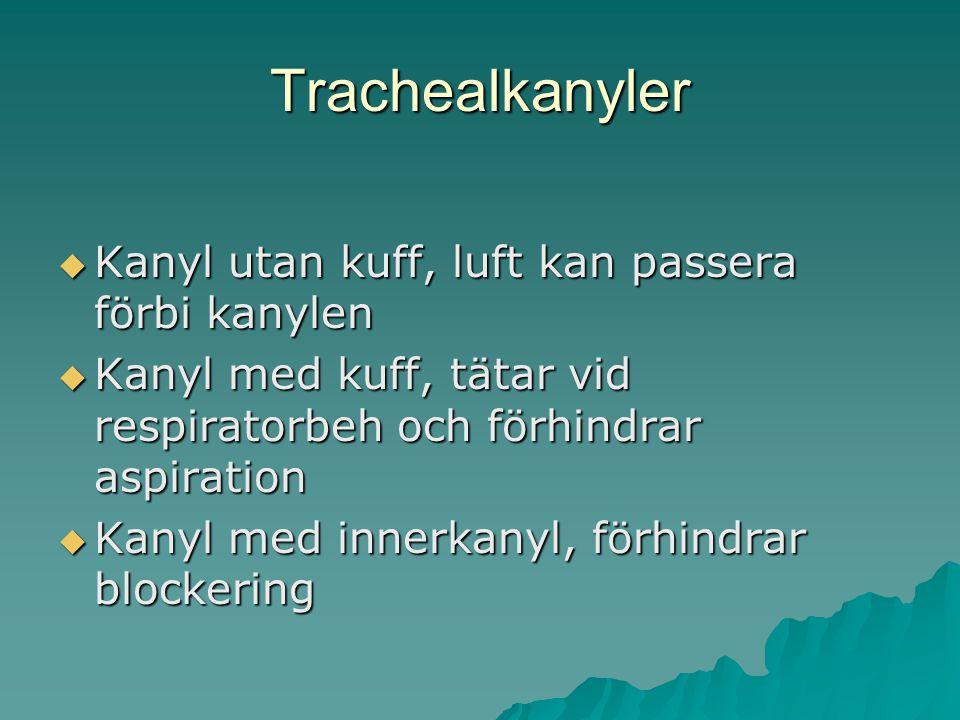 Trachealkanyler Kanyl utan kuff, luft kan passera förbi kanylen