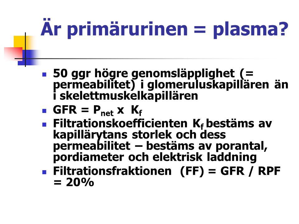 Är primärurinen = plasma