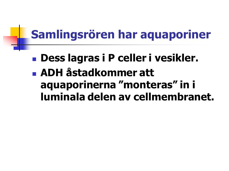 Samlingsrören har aquaporiner