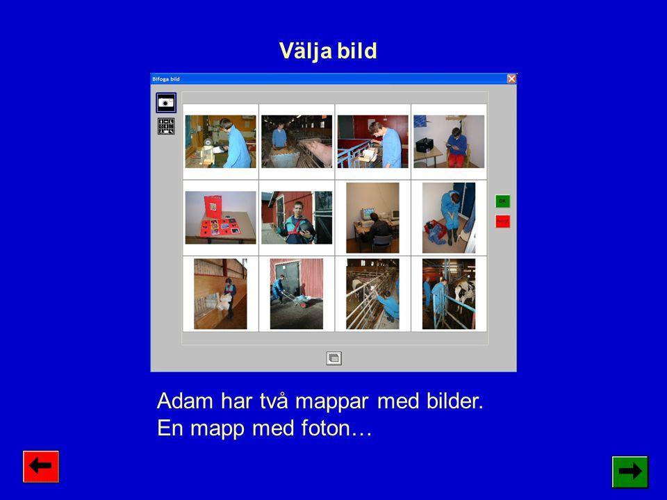 Välja bild Adam har två mappar med bilder. En mapp med foton…