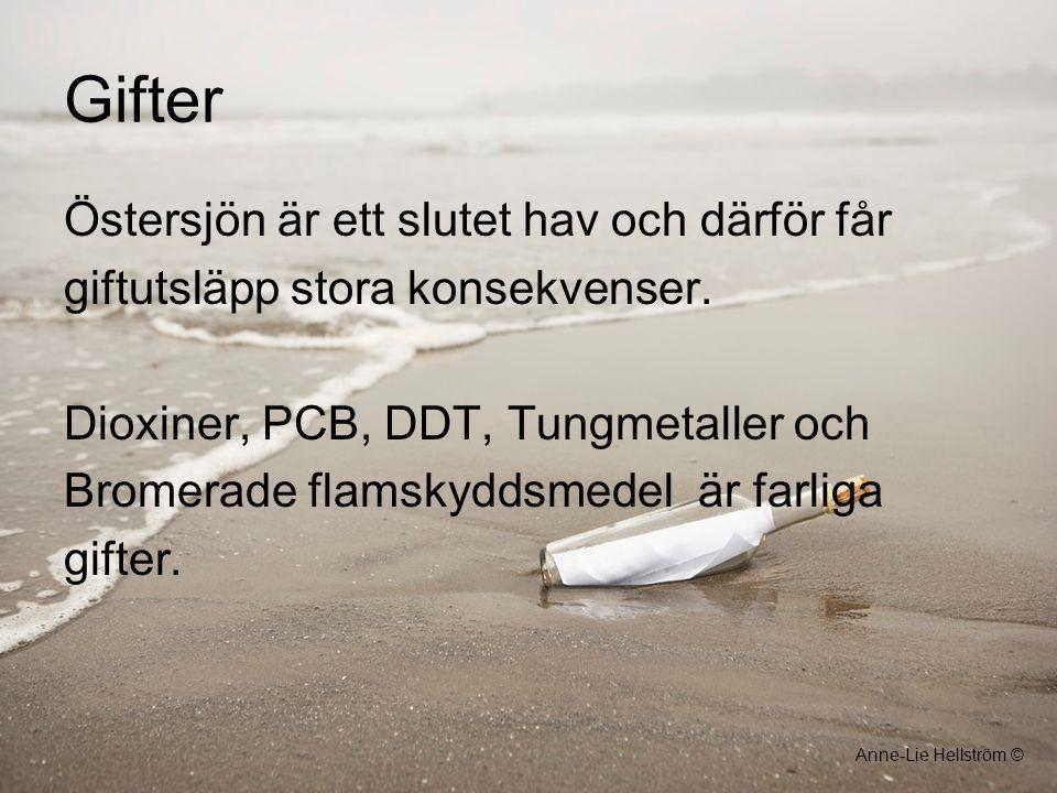 Gifter Östersjön är ett slutet hav och därför får