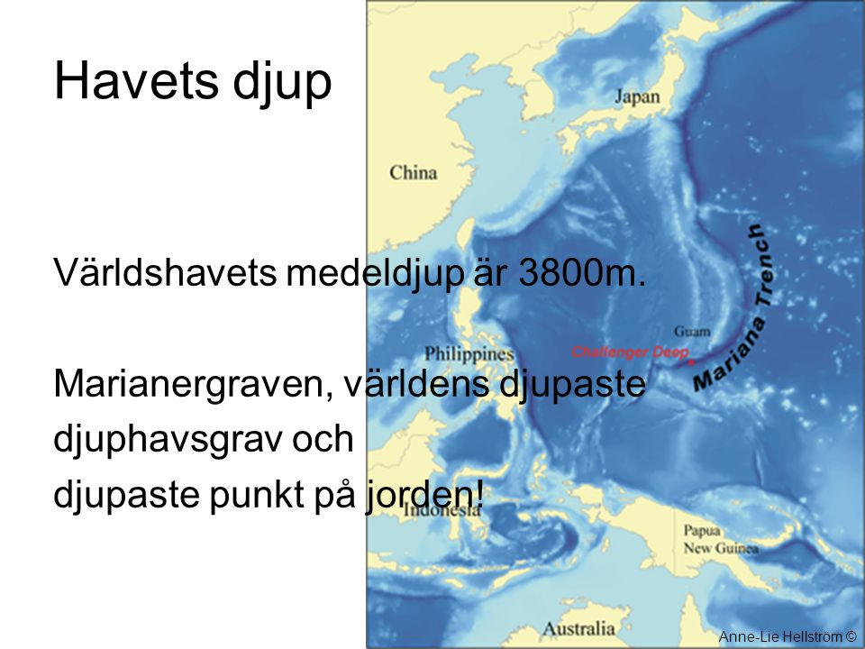 Havets djup Världshavets medeldjup är 3800m.