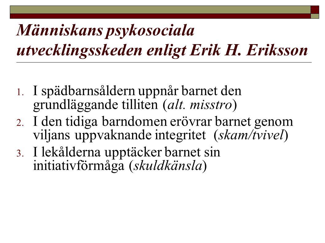 Människans psykosociala utvecklingsskeden enligt Erik H. Eriksson