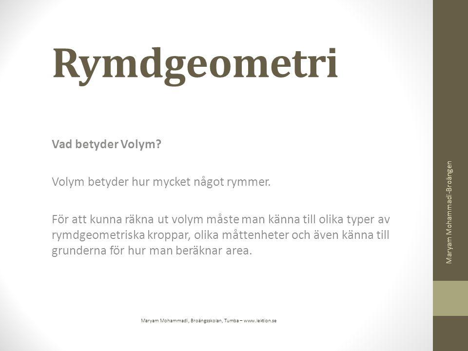 Maryam Mohammadi, Broängsskolan, Tumba – www.lektion.se