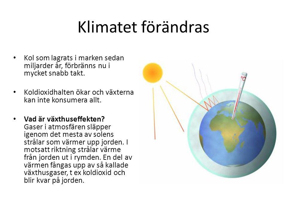 Klimatet förändras Kol som lagrats i marken sedan miljarder år, förbränns nu i mycket snabb takt.