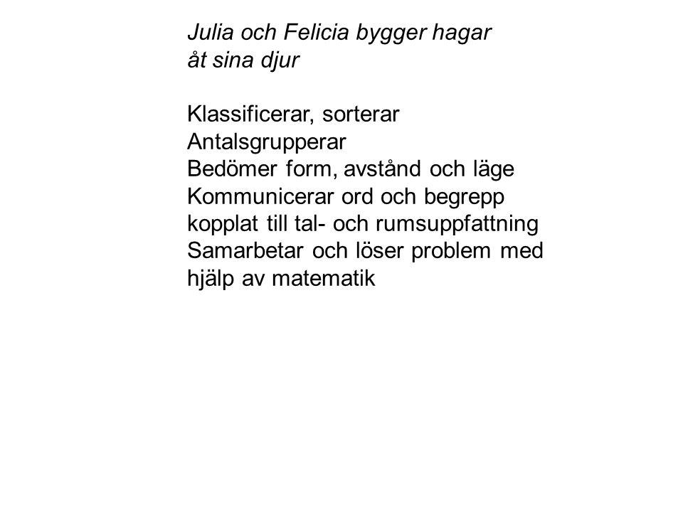 Julia och Felicia bygger hagar