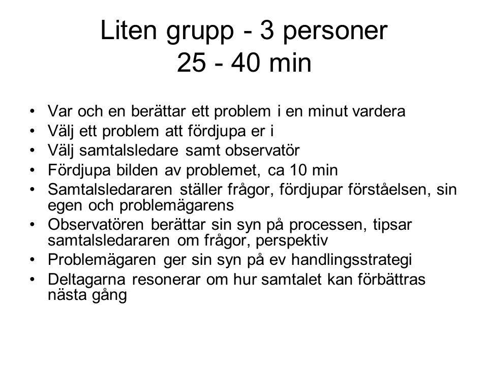 Liten grupp - 3 personer 25 - 40 min
