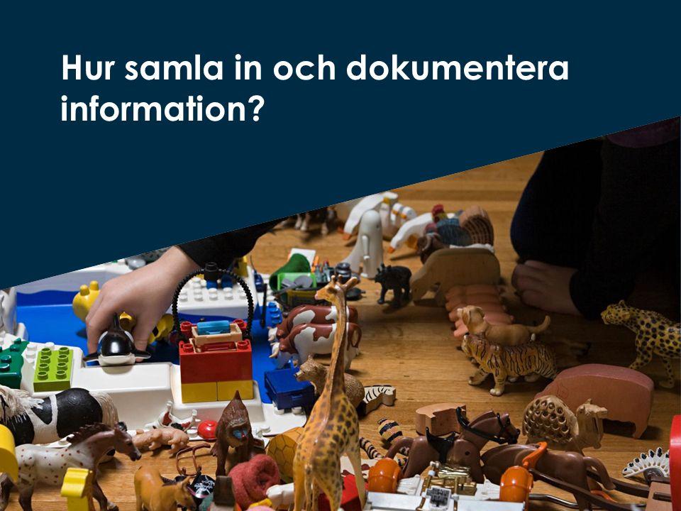 Hur samla in och dokumentera information