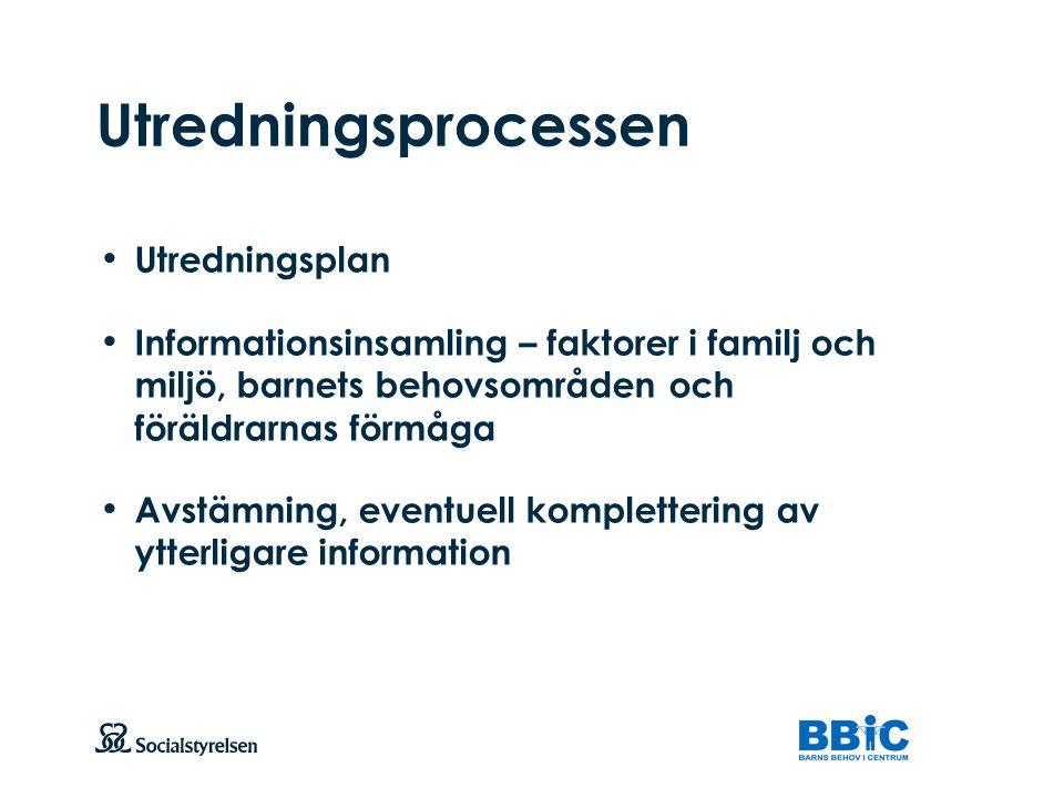 Utredningsprocessen Utredningsplan