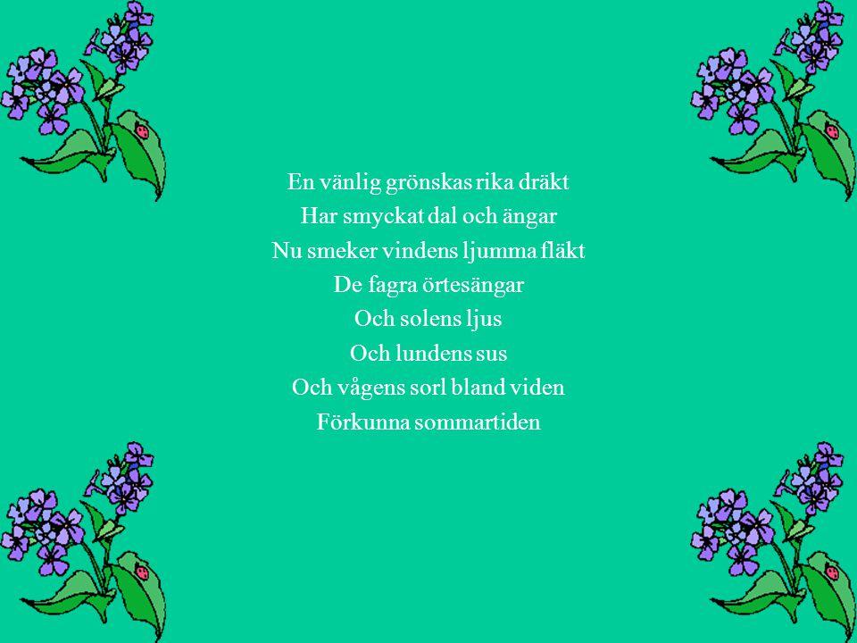 En vänlig grönskas rika dräkt Har smyckat dal och ängar