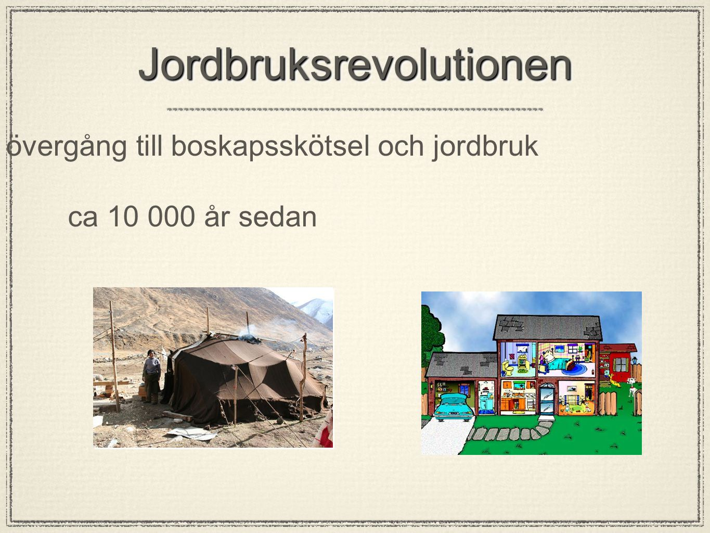 Jordbruksrevolutionen