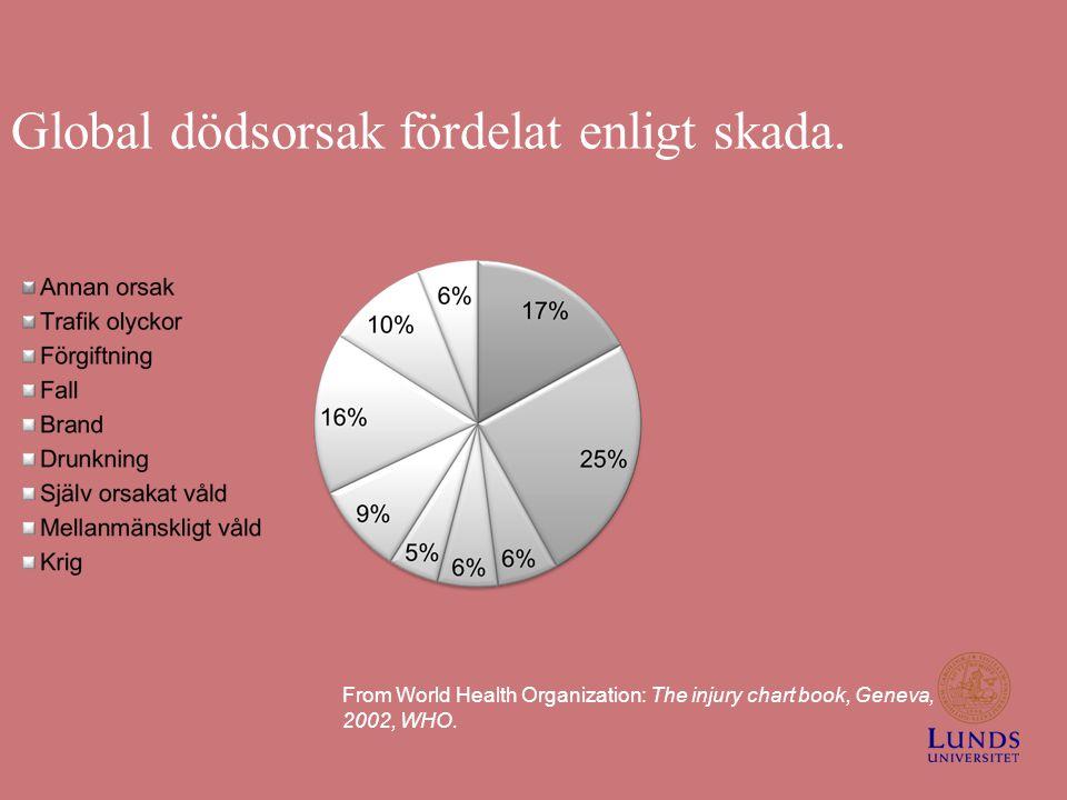 Global dödsorsak fördelat enligt skada.