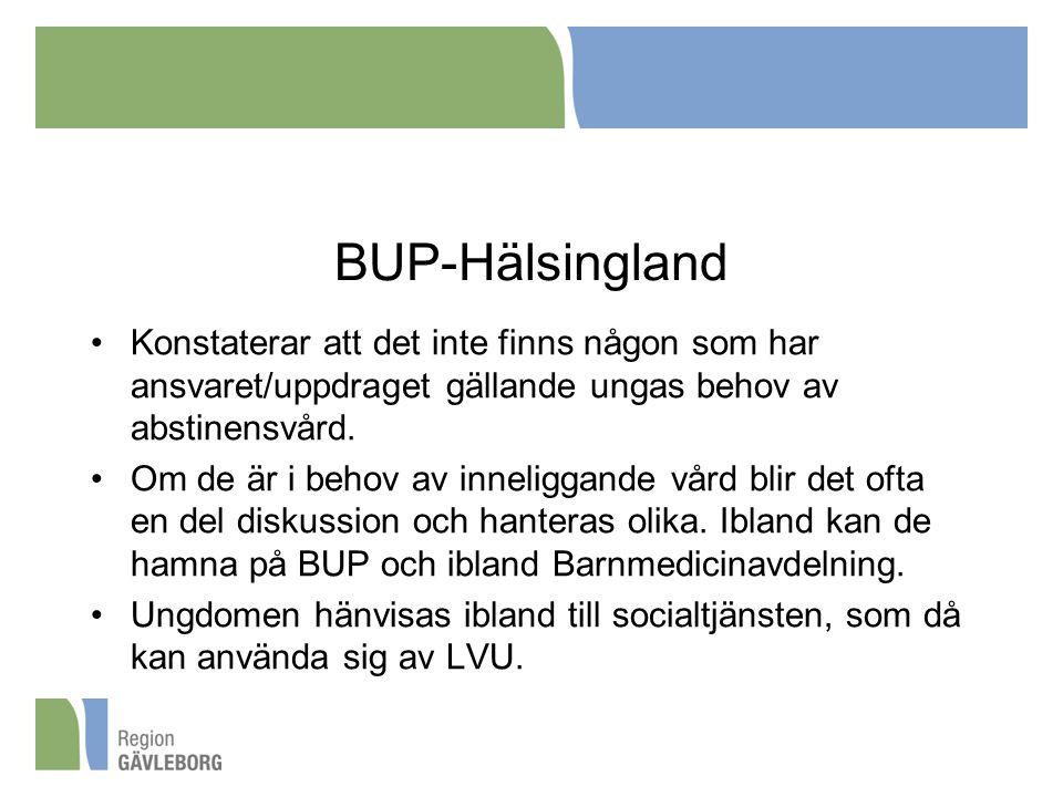 BUP-Hälsingland Konstaterar att det inte finns någon som har ansvaret/uppdraget gällande ungas behov av abstinensvård.