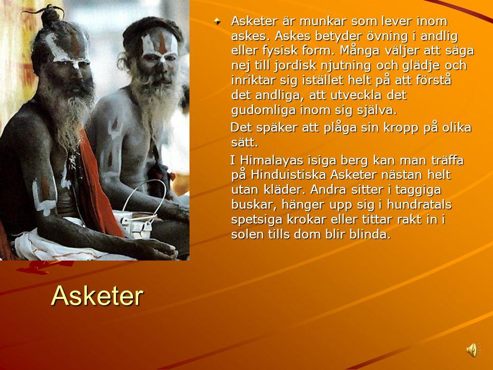 Asketer är munkar som lever inom askes