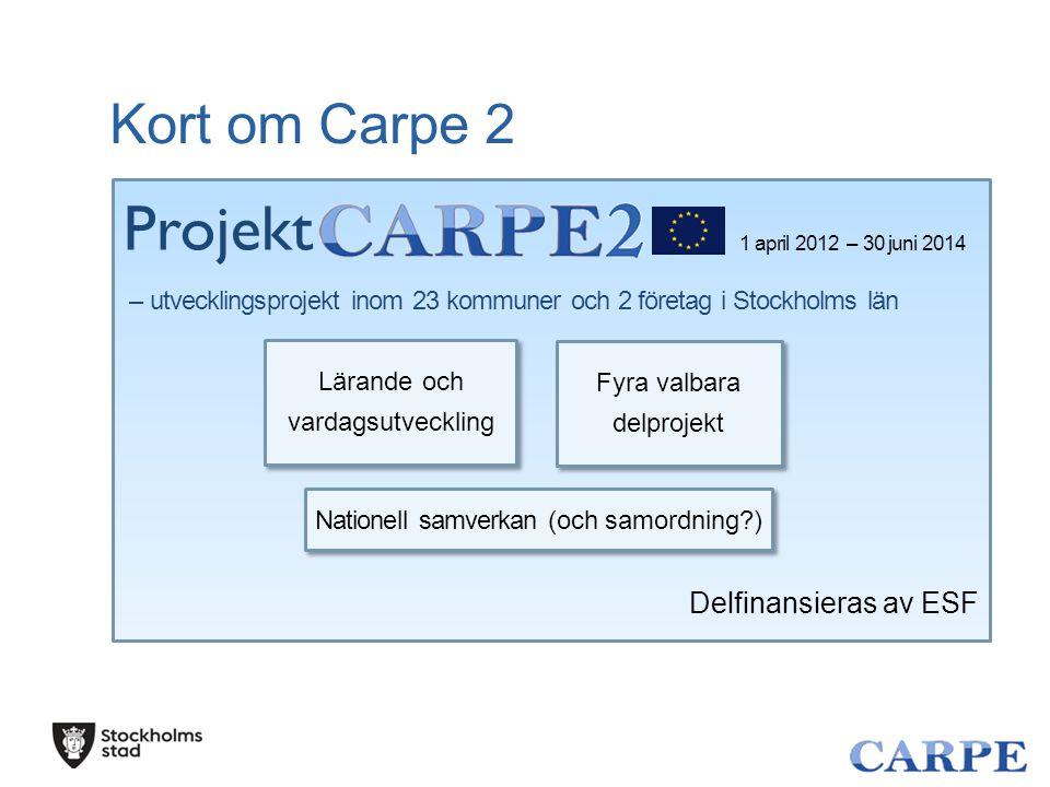 Projekt Kort om Carpe 2 Delfinansieras av ESF